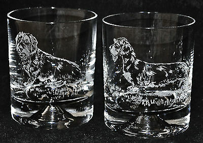 WIRE HAIRED DACHSHUND *DOG GIFT* Boxed PAIR GLASS WHISKY TUMBLER