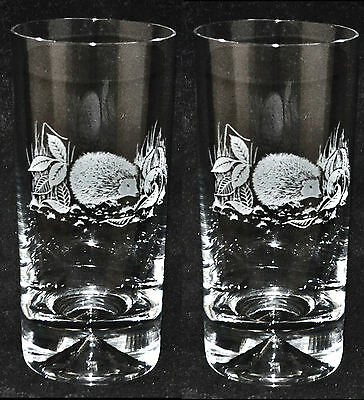 *ANIIMAL GIFT* Boxed Pair Highball Tall Tumblers with HEDGEHOG design