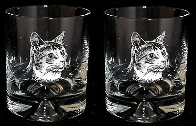 *CAT GIFT* Glass Whisky Tumblers ENGRAVED CAT DESIGNS