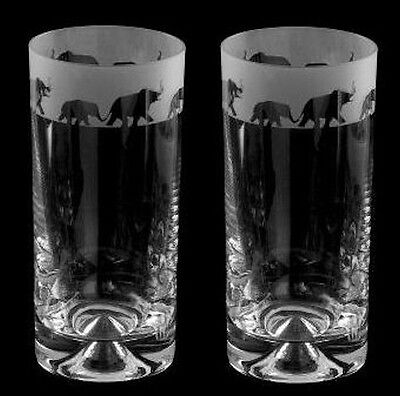 Fabulous Elephant Gift - Boxed Pair Glass Highball