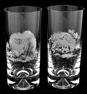 *DOG GIFT* PAIR Glass Tall Highball Tumbler POMERANIAN