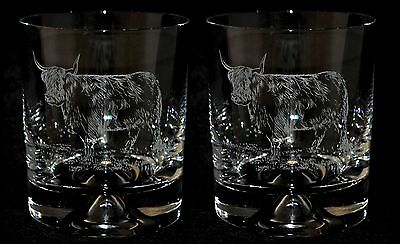 HIGHLAND COW - Boxed Pair GLASS WHISKY TUMBLER *Cattle Gift*