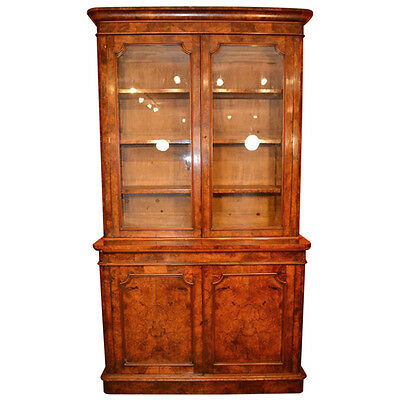 Antique English Victorian Burr Walnut Bookcase c.1850