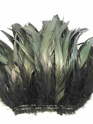 "50+ Black Iridescent Rooster Coque Tail Feather 6""l-8""l"
