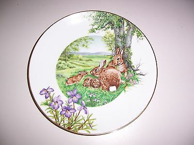 Eastern Cottontail Rabbit 1983 Collectors Plate Southern Living Gallery