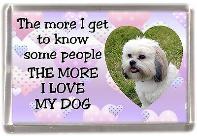 "Lhasa Apso Dog Fridge Magnet ""THE MORE I LOVE MY DOG"" No 1 by Starprint"