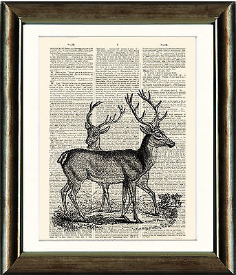 Antique Book page Art Print - Vintage Deer Dictionary page Wall Art