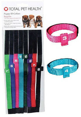 Puppy ID Collars, USA Seller, Set of 8 Litter bands Color coded Numbered