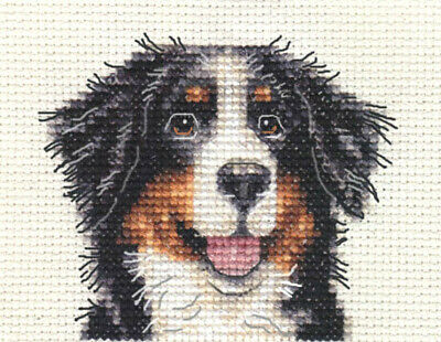 BERNESE MOUNTAIN DOG ~ Full counted cross stitch kit + All materials included