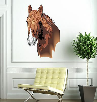 Horse Head Full Colour Wall Sticker art vinyl, Decal, Graphic tr40