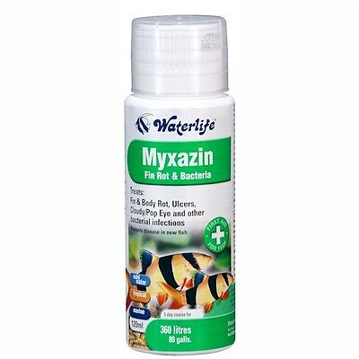 Waterlife Myxazin  100Ml 250Ml 500Ml 1000Ml Fin Rot Bacteria Fish Treatment