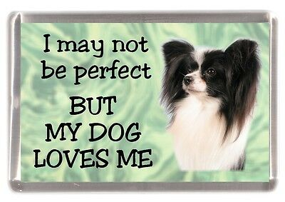 """Papillon Dog Fridge Magnet """"I may not be perfect BUT........."""" by Starprint"""