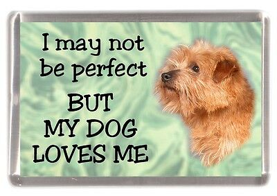 """Norfolk Terrier Dog Fridge Magnet """"I may not be perfect ......."""" by Starprint"""