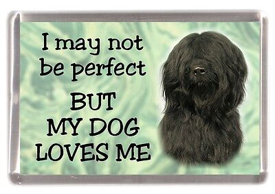 "Briard Dog No. 2. Fridge Magnet ""I may not be perfect BUT ....."" by Starprint"