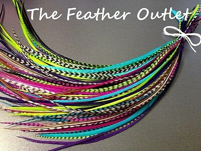 Feather Hair Extensions Lot Grizzly Striped Real Thin Skinny Long Bright OG....