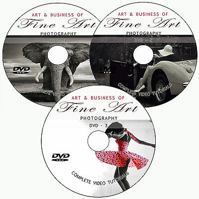 LEARN FINE ART DIGITAL PHOTOGRAPHY+SELLING BUSINESS TRAINING TUTORIAL ON 3 DVD's