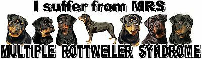 """I Suffer from  MULTIPLE  ROTTWEILER  SYNDROME"" Dog Car Sticker by Starprint"