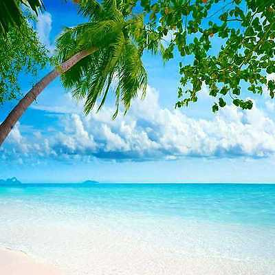 Tropical beach 10'x10' CP Backdrop Computer printed Scenic Background zjz-440