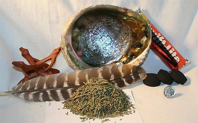 """Abalone Shell JUNIPER NEEDLES Charcoal Tablets 4"""" Wood Stand Smudging Feather"""