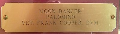 """Custom Personalized Solid Brass Engraved 8"""" X 2"""" Stable/Stall Plate w/screws"""