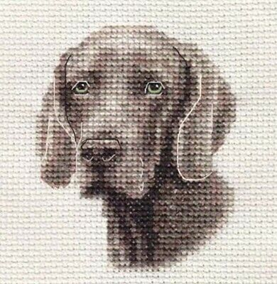 WEIMARANER dog, puppy ~ Full counted cross stitch kit, all materials