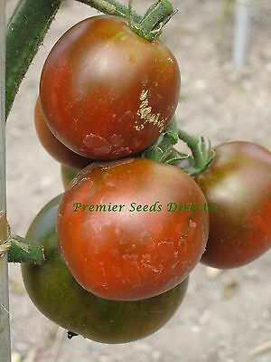 Vegetable Tomato Black Prince 100 Finest Seeds