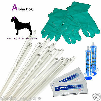 "10 - 12"" Tubes Dog Standard AI Rod Kit Canine Artificial Insemination / Breeding"