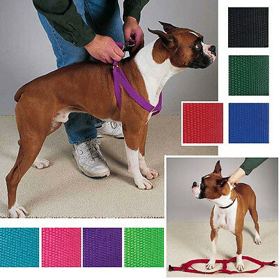 Step In Dog Harness, USA Seller Nylon Adjustable Two Steps Guardian Gear Walking