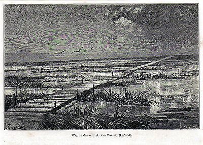 Antique woodcut print road to Wolmar Livonia / holzstich Livland 1867