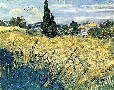 Green wheat field with cypress by Van Gogh Giclee Fine Art Repro Print on Canvas