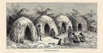 Antique woodcut print hut indians Gran Chaco / indian rancho South America 1893