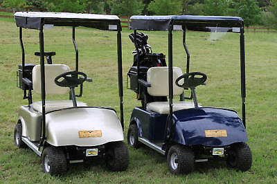 Single Seat Hawk Golf Cart