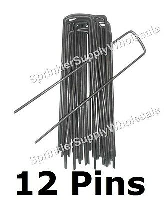 "12 DeWitt Anchor Pins G-APRC 6""x1"" Sod Staples Frost Cloth Weed Mat etc. PK12"