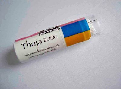 Thuja 200c homeopathy for warts sarcoids by Natura horse