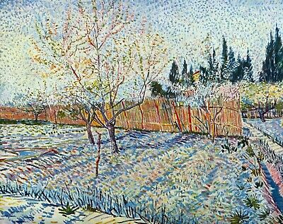 Orchard with cypress by Vincent Van Gogh Giclee Fine Art Print Repro on Canvas