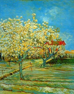 Orchard by Vincent Van Gogh Giclee Fine Art Print Reproduction on Canvas