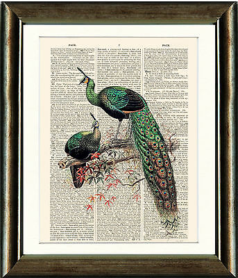 Old Antique Book page Art Print - Vintage Emerald Peacocks Dictionary Page Print