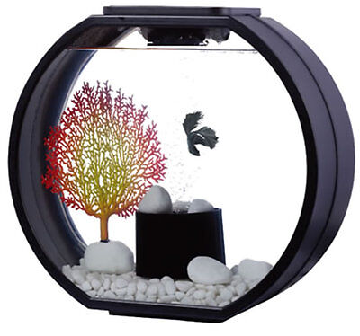 Fish R Fun Deco-O Tank  Mini  10Ltr Round Tank Black Modern Design