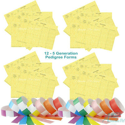 12 - 5 Generation Pedigree Forms Quality Certificates Puppy Breeder & ID Collars