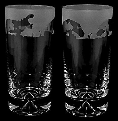*HIPPO GIFT* Boxed Pair of GLASS HIGHBALL TUMBLERS with HIPPO Frieze