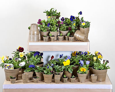 84 Pack of Natural Biodegradable Plant Pots in Various Sizes Flower Pot Garden