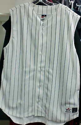 36aecb2062b6 NWOT CHAMPION BRAIDED Pinstripe Spellout Blue And White Men's ...