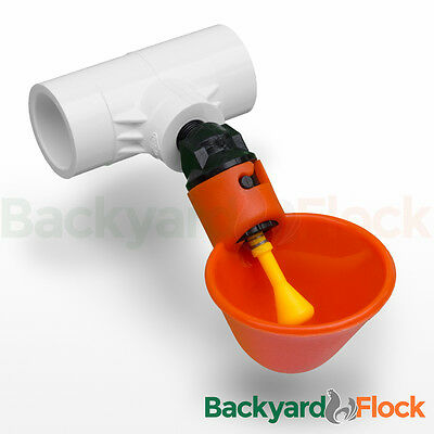 6 Pack Poultry Water Drinking Cups-Chicken Hen Automatic Drinkers & PVC Fittings