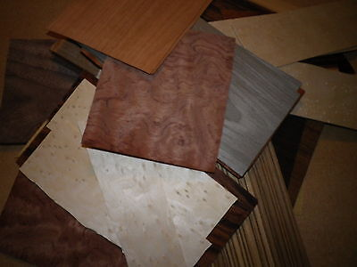 ART & CRAFTS  exotic wood veneer 55 +   pieces of a  good variety