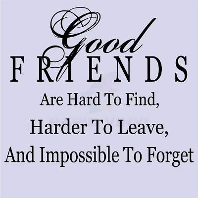 GOOD FRIENDS HARD TO FIND Wall Decal Wall Sticker Home Family Wall Art Decal