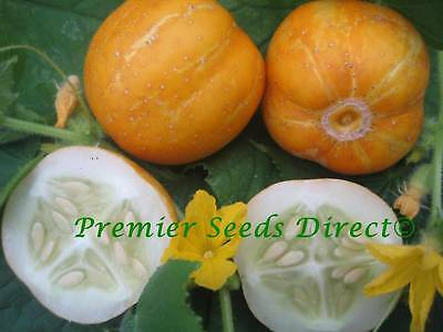 Vegetable  Cucumber Crystal Lemon  105 Finest Seeds