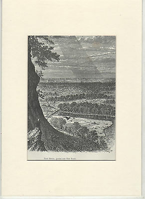 Antique matted print  City of New Haven seen from East Rock Park  USA 1889