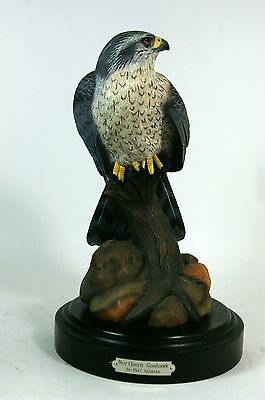 Bird Sculpture Hawk Goshawk Figurine Phil Galatas