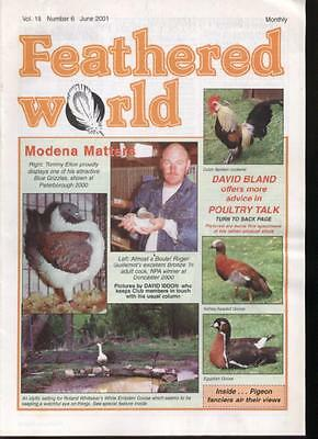 FEATHERED WORLD MAGAZINE - June 2001  Poultry Pigeons