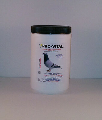 Pigeon Product - Pigeon Boost 16oz by ProVital for Racing Pigeons